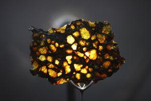 Imilac_slice,_Museo_del_Meteorito