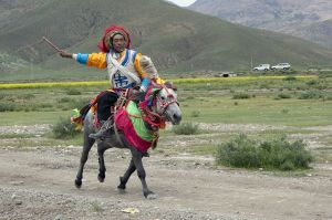1024px-20110812_Nomad_Horse_Racing_Zhanzong_Tibet_China_1